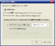 DivX Stage6_03.png