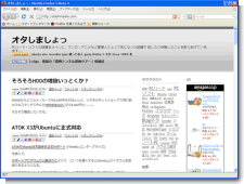 Firefox3_beta4.png