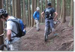 trail_1005_01.jpg